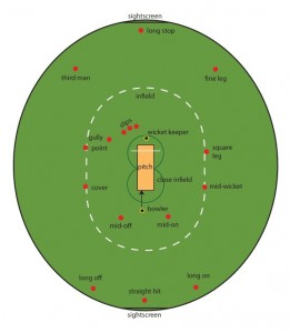 cricket-schema-plan-terrain