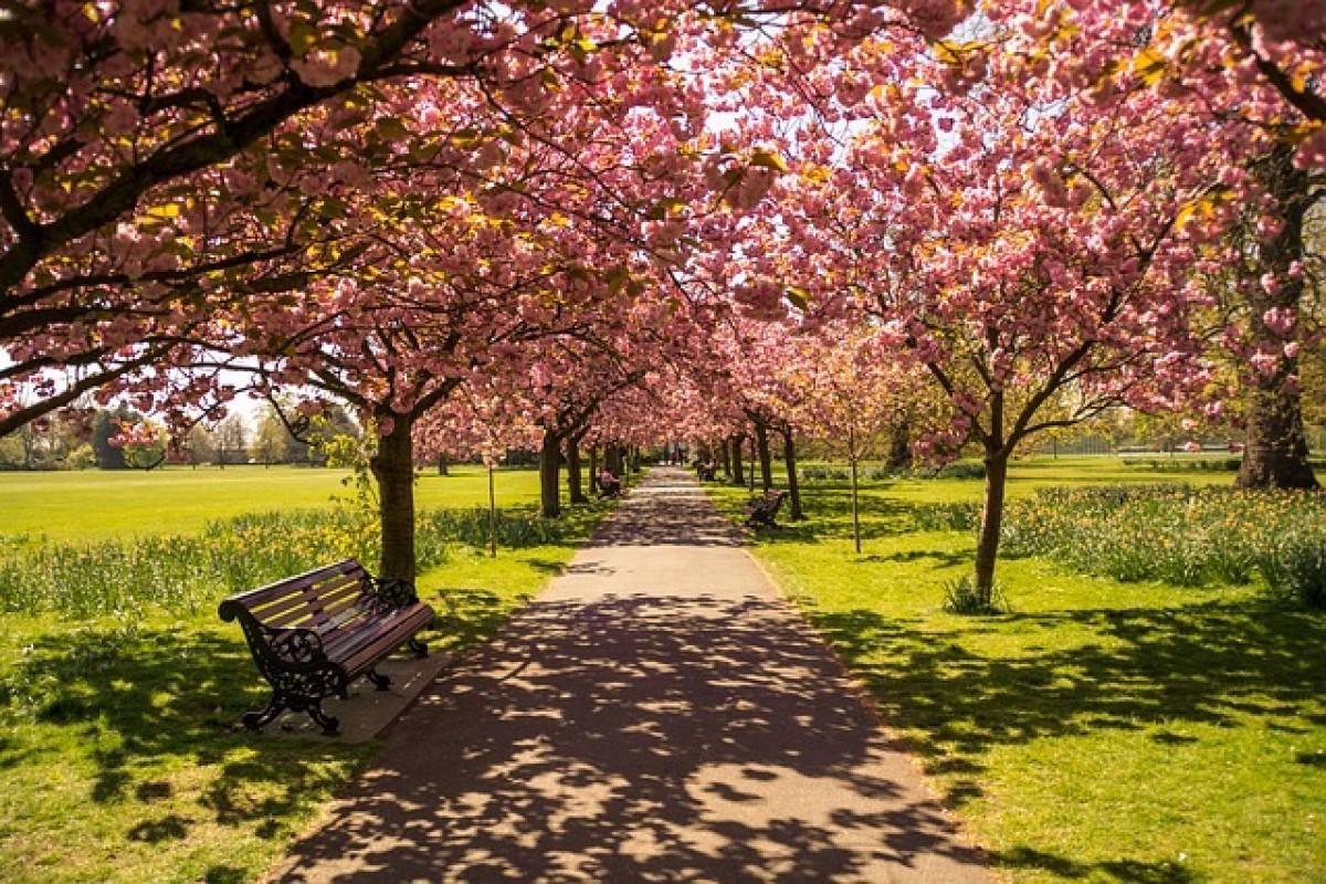 Top 10 des Parcs de Londres pour se balader, faire du sport, se reposer…