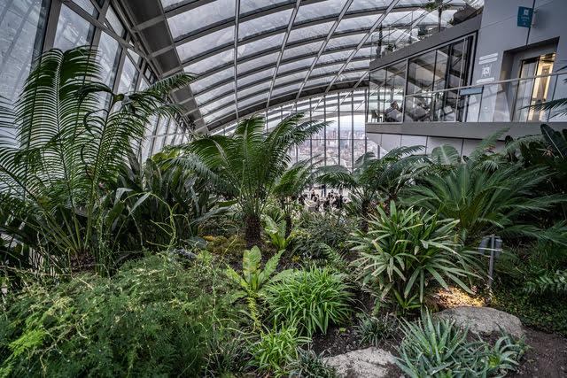 Sky-garden-jardin