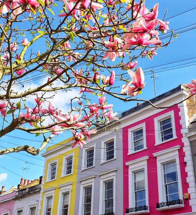 Notting-hill-meteo-printemps